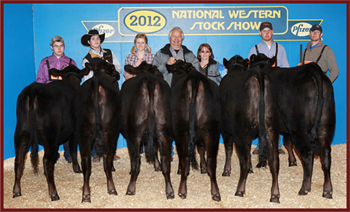 2012 National Western Stock Show National Grand Champion Best Six Head 2012